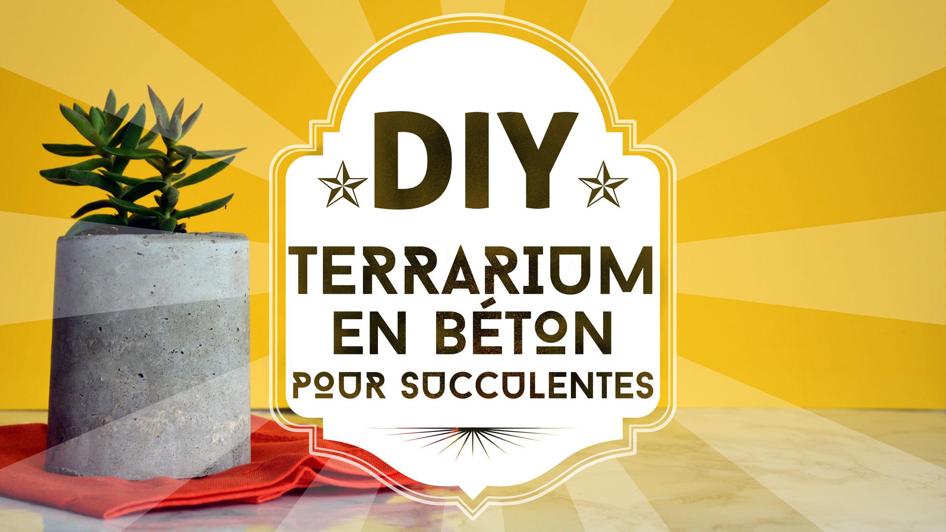 DIY : un terrarium en béton